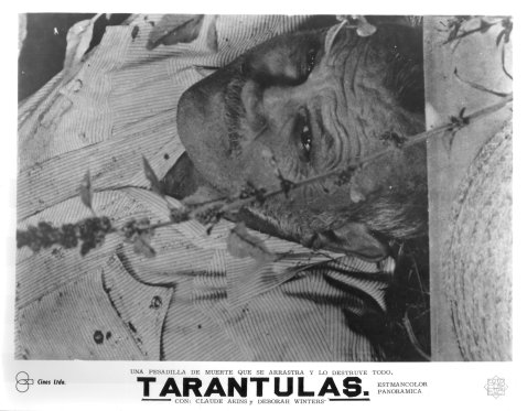 Tarantulas: The Deadly Cargo - Mini Lobby Card in Spanish