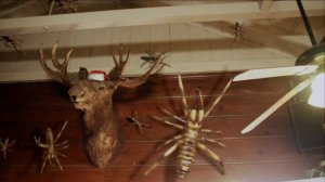 Santa Moose and his eight camel spiders come for the naughty children.