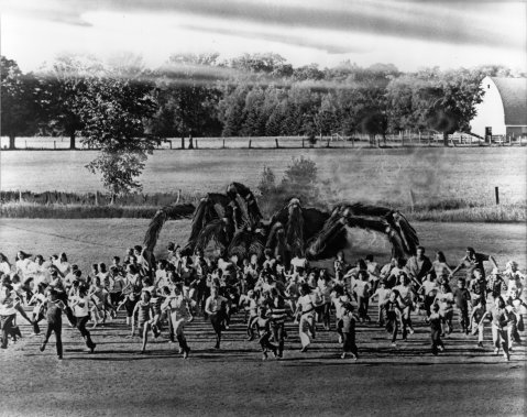 The Giant Spider Invasion - Field Promotional Still (front)