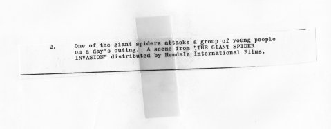 The Giant Spider Invasion - Field Promotional Still (back)