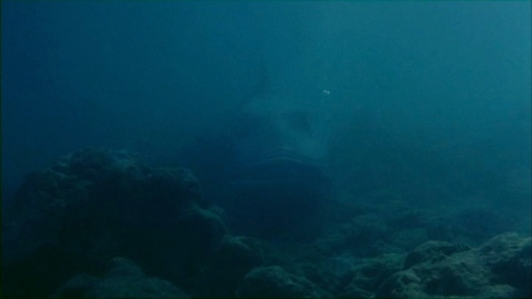 They wisely keep the abyssal unshark in murky shots.