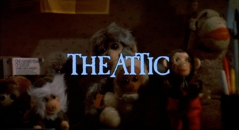 THE ATTIC: the terrifying story of a librarian who loves monkeys.