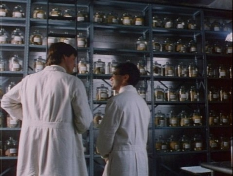 Dr. Martin and his shelves of brains.