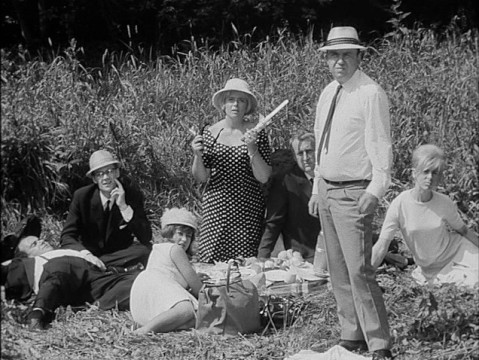 The picnic-goers watch a wedding party go by.
